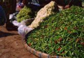 Burma-Myanmar-Erlebnisreise-Chillis