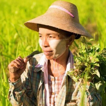Burma-Myanmar-Erlebnisreise-Farmerin