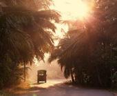 Sri-Lanka-Erlebnisreise-Landschaft