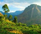 Sri-Lanka-Erlebnisreise-Ellarock
