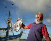 Sri-Lanka-Erlebnisreise-Fischer