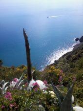 Italien-Wanderreise-Cinque Terre-Ausblick-Meer