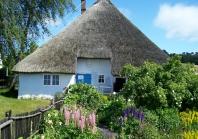 reetgedecktes Haus auf Rügen