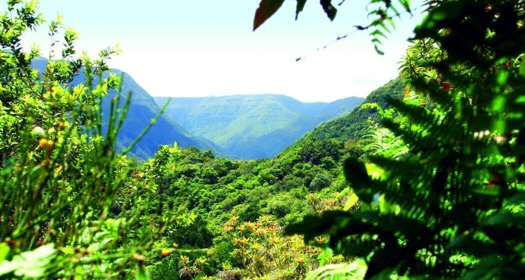 Madeira Wanderreise mit individueller Verlängerung