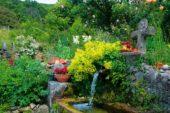 Frankreich-Wanderreise-Blütenpracht