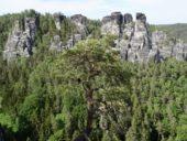 deutschland-wanderreise-saechsische-schweiz-felsformation
