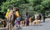 äthiopien-wanderreise-tiefland