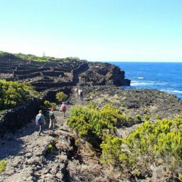 Azoren-Wanderreise-Küste-Pico