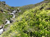 Fluss,Alpajurras, Wandern