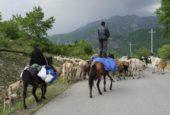 Aserbaidschan-Wanderreise-Hirten