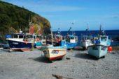 Reise Großbritannien: Cadgewith Hafen