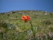 Albanienreise Alpen wandern