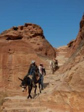 Jordanienreise-Esel-Berge-Petra