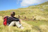 Äthiopien-Wanderstudienreise-endemischen-Blutbrustpaviane