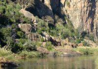 EcoTraining_Botswana