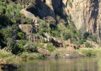 Botswana-Reisen