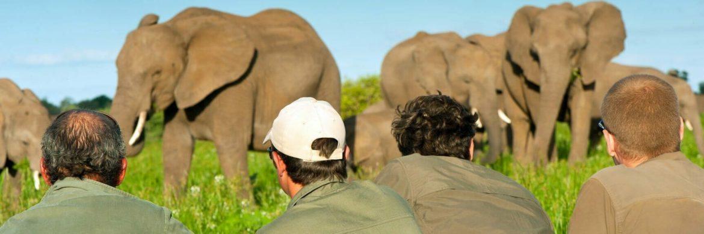 EcoTraining im Borana Camp/Kenia