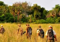 Ranger Kurs - EcoTraining in Simbabwe 55 Tage
