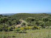 Portugal-Wanderreise-Hinterland Algarve