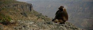 Äthiopien-Reisen