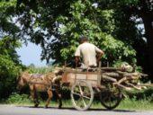 Georgien-Reise: Radurlaub im Kaukasus