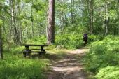 Schweden Wald Wanderung