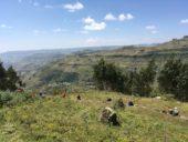 Äthiopien-Wanderstudienreise-Landschaft