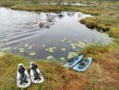 estland-aktivreise-moorschuhe-wanderung