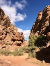 Jordanien-Wanderstudienreise-Wadi-Rum