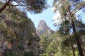 tuerkei-wanderreise-taurusgebirge-berg-baume