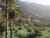 Kanaren-Wanderreise-La Gomera-Palmendorf-El Guro-Valle Gran Rey