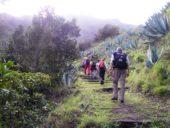 Kanaren-Wanderreise-La Gomera-Wanderung