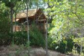 Erlebnisreise-Malawi- Dzanlanyama Forest House