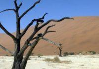 Namibia-Reisen