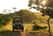 Ranger-Ausbildung-Südafrika-Botswana
