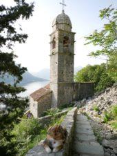 Bergwanderungen Montenegro Urlaub Wanderreise