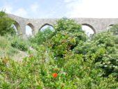 Montenegro-Wanderreise-Aquädukt-Stari-Bar