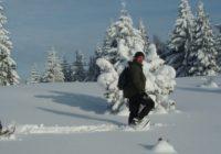 Slowakei Winterreise - Auf den Spuren von Wolf, Bär und Luchs