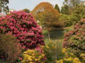England-Wanderreise-blühende Gärten