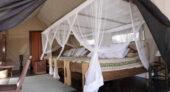 tansania-individualreise-rufijirivercamp