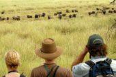 Ranger-Ausbildung-Südafrika-Wasserbüffel