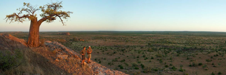 Ranger-Ausbildung-Südafrika-Savanne
