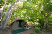 Ranger-Ausbildung-Südafrika-Mashatu-Camp