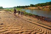 Ranger-Ausbildung-Südafrika-Landschaft