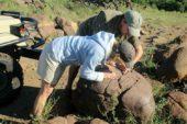 Ranger-Ausbildung-Botswana-Trails-Guide