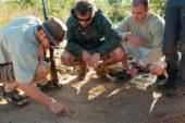Ranger-Ausbildung-Südafrika-Fährtenlesen