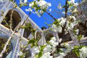 Usbekistan-Erlebnisreise-Registansquare-Samarkand