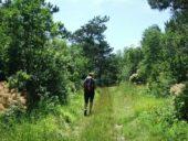 Slowenien-Wanderreise-Wanderung