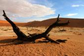 Namibia-Erlebnisreise-Sossusvlei