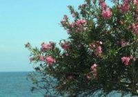 Südzypern Wanderreise